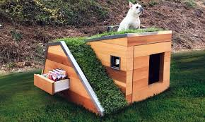 Designer Pet Houses Business