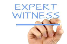 Expert Witness Business