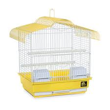 Fish Tank Bird Cage Maintenance and Sales Business