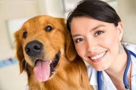 Animal Behavior Consultant