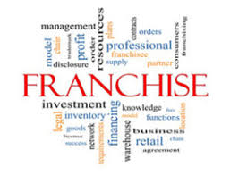 Franchise Consultant Business