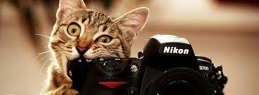 Freelance Photographer Business
