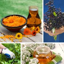 Herbalist Business