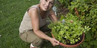 Herb Gardener Business