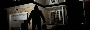 Home Security Consultant Business