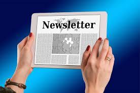 Newsletter Publishing Business