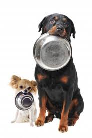 Pet Food and Supplies Delivery