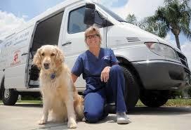 Pet Transportation Business