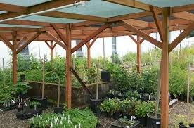 Plant Nursery Business