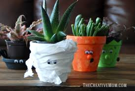 Potted Plants Business