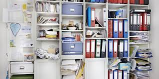 Professional Organizer Business