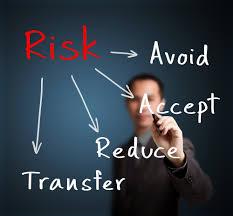 Risk Management Consultant