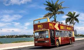 Sightseeing Tours Business