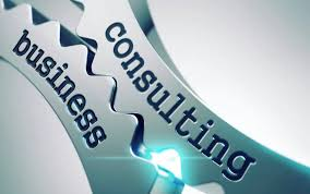 Small Business Consultant Business