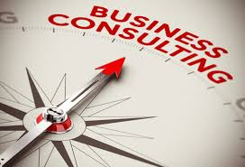 Business Consultant Business