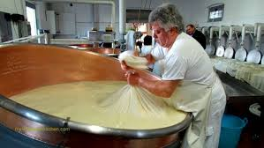 Cheese Making Business