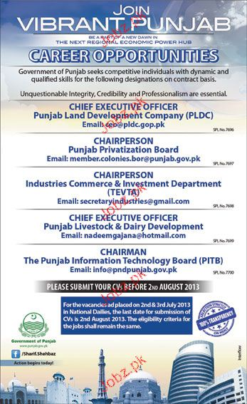 Chief executive Officers and Chairperson Job Opportunity