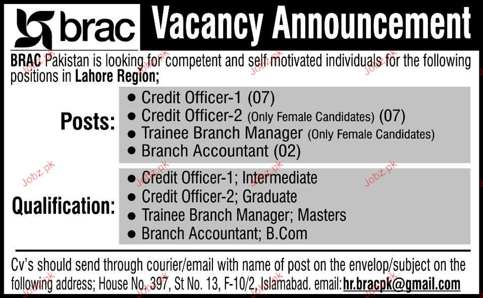 Credit Officers, Branch Accountant Job Opportunity