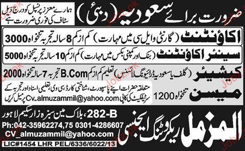 Accountant, Senior Accountant, Cashiers Wanted