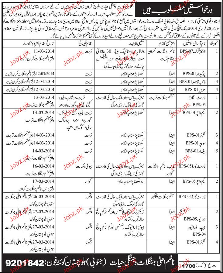 Junior Clerks, Chawkidars, Forest Guards Job Opportunity