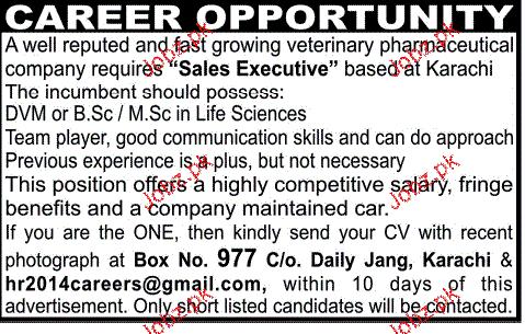 Wanted freelance writers dubai
