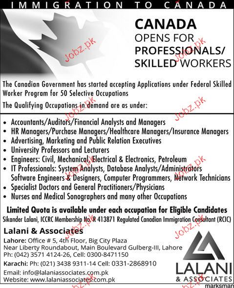 Accountants, Auditors, Managers, Engineers Job Opportunity