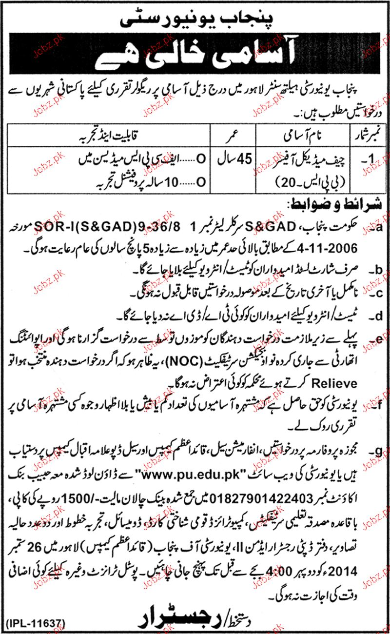 chief medical officer job in punjab university health center
