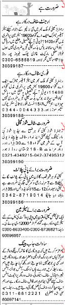 Sunday Express Classified Sales Officers Job Opportunity