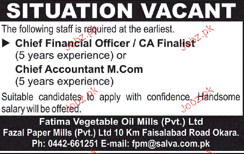 Chief Financial Officer and Chief Accountant Job Opportunity