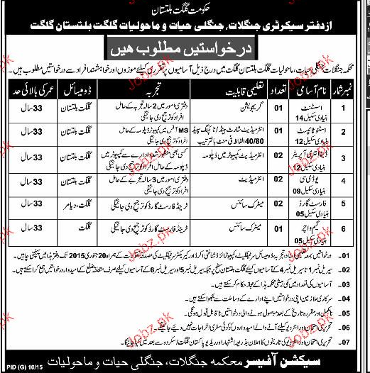 Assistants, Data Entry Operators Job Opportunity