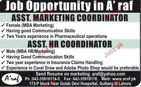 Assistant Marketing Coordinators Job Opportunity