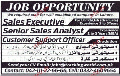 Senior Sales Analyst, Sales Executives Job Opportunity