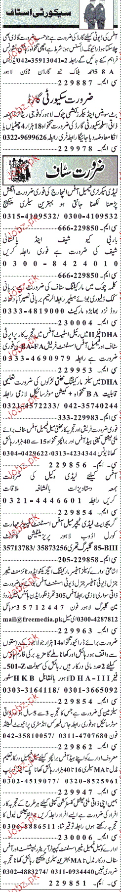 Lady Teachers, Office Assistants, Executives Job Opportunity