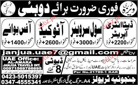 Civil Surveyors, Data Entry Operators Job Opportunity