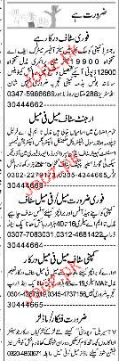 Sales Offiers, Engineers and Compuer Staff  Wanted