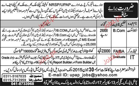 Accountant, Field Workers and IT Staff Job opportunity