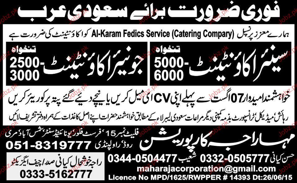 Senior Accountant and Junior Accountant Job Opportunity
