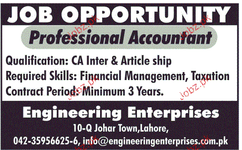 Professional Accountant Job Opportunity