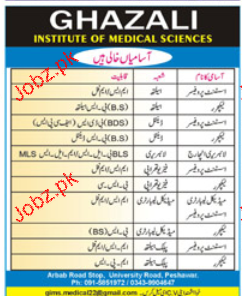 Assistant Professors, Lecturers Job Opportunity