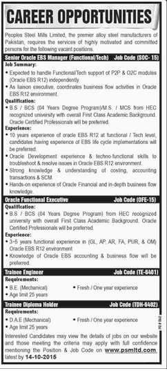 Senior Manager, Oracle Functional Executives Job Opportunity