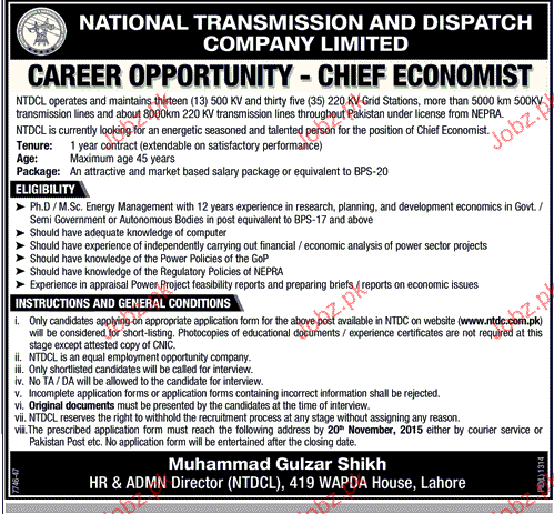 chief economist in national transmission and dispatch