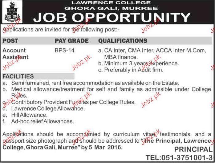 Accounts Assistants Job in Lawerance College