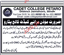 Moazan Job in Cadet College Patero