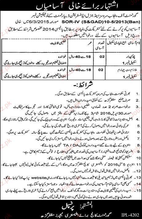 Chawkidars Job in Government Elementary College Teachers