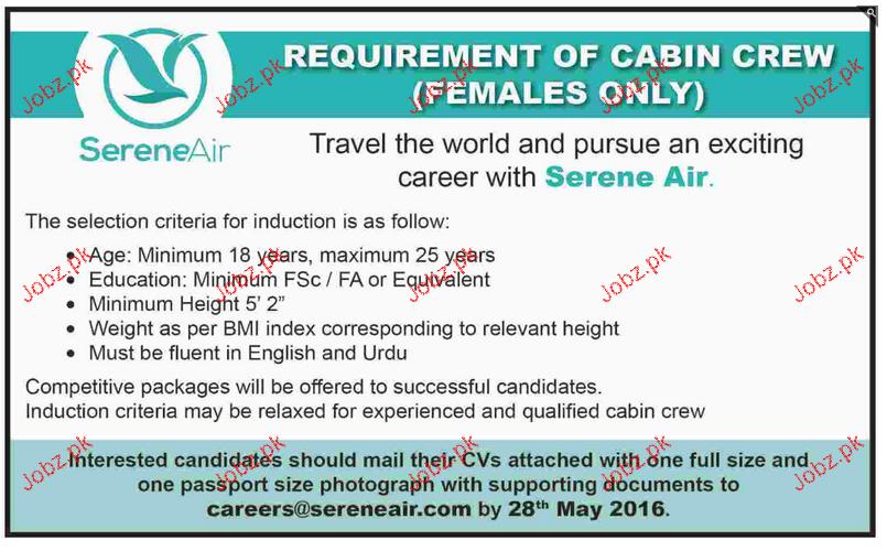 Cabin Crew Job in Shaheed Air
