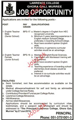 English Teachers Job in Lawerance College
