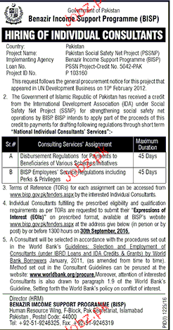 Consultants Job in Benazir Income Support Programme