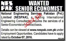 Senior Economist Job Opportunity