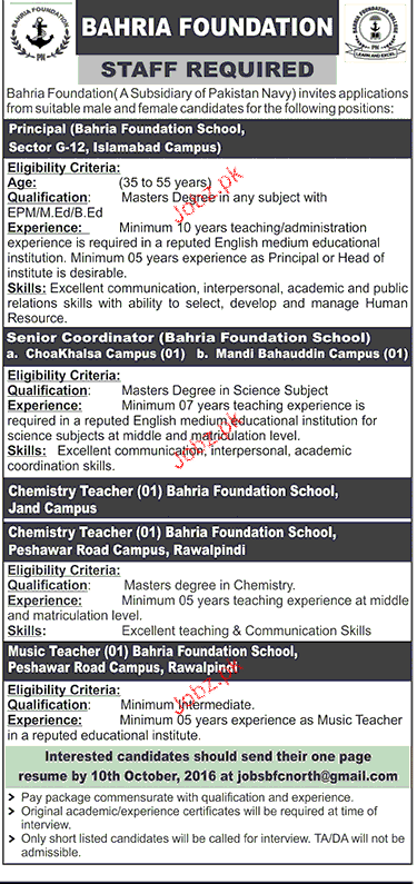 Principal and Senior Coordinators Job Opportunity