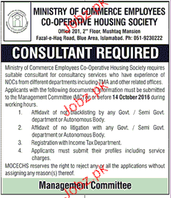 Consultants Job in Ministry of Commerce